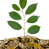 Zöldbank: ki lesz a befutó?