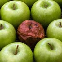 Rohadt almák a magyar pénzügyi piacon