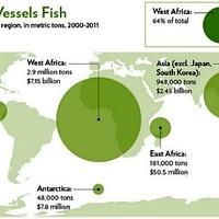 Kína lerabolja a tengereket