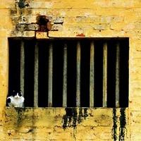 A börtön nem a bankároknak való?