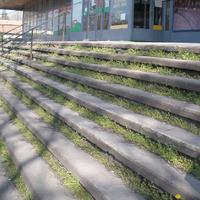 Lassan kivirágzik a Naszály lépcsője