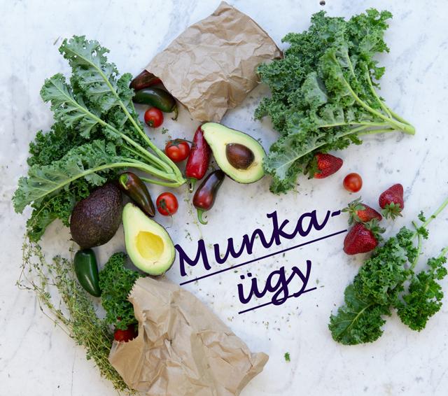 munkaugy-salata-tv.png