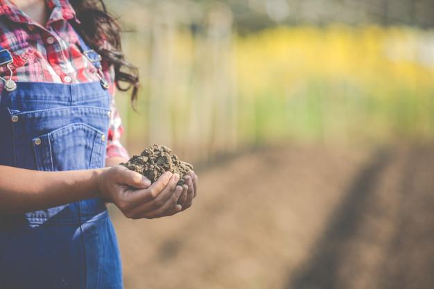 women-farmers-are-researching-soil_1150-8174.jpg