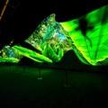 Lenyűgözték a CES látogatóit az LG látványos OLED installációi
