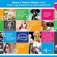 Kutyák járulnak hozzá, hogy a Telenor ügyfeleire több figyelem jusson