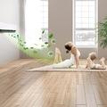 Kétszer szennyezettebb lehet a levegő a nappalinkban, mint az utcán