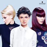 SCHWARZKOPF PROFESSIONAL: 2016 trendteremtő frizurái: Flex kollekció