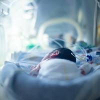 Fókuszban a higiénia és a Szent János Kórház koraszülöttjei