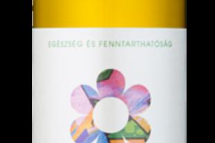 DEMETER BORÁSZAT Hanga, Rosetta Rozé és az Egri Bikavér Selection borait kóstolhatod meg a Budavári Borfesztivál ideje alatt.