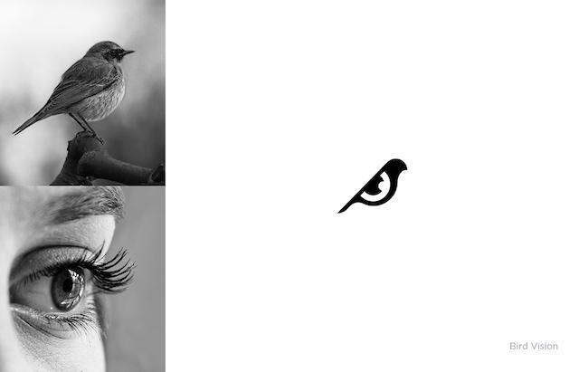 self_brand_3.jpg