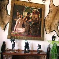 Minidzsungel és a legjobb afrikai kávék a Balaton mellett