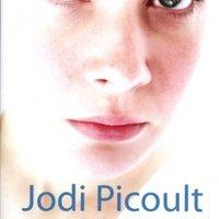 Jodi Picoult - Tizenkilenc perc (2007)