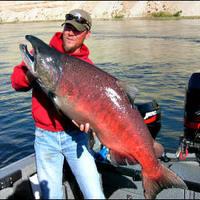 """A változás szele: halászat a """"folyóban"""""""