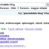 Authority site lett a Piackutatás.blog.hu