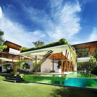 Willow House, természetközelben