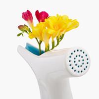 Öntözőkanna, váza és gyönyörű... mi az?