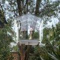 Fára épített üvegkuckó