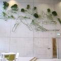 Növényszobrok fém keretben