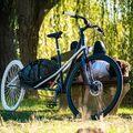 Convercycle, az ideális teherszállító kerékpár