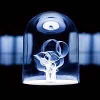 Continuum lámpa, ami egyenesen megbabonáz