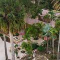 Építésziroda a pálmafák árnyékában