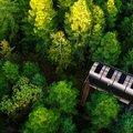 Fuselage, különleges és környezetbarát kabin