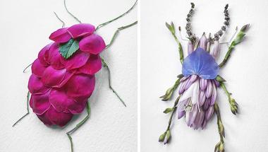 Rovarok virágszirmokból és levelekből