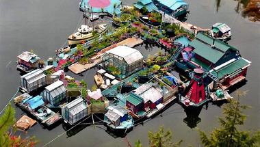 """""""Freedom Cove"""" a színes és vidám úszó sziget"""