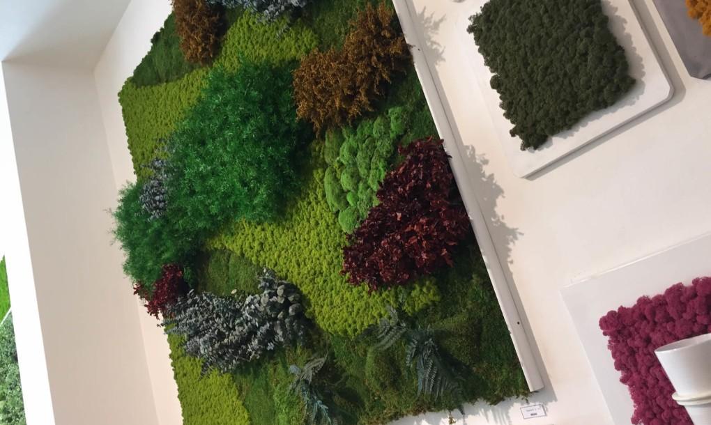 mossmania-green-wall-panel-1020x610.jpg