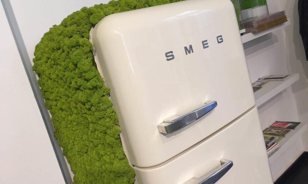 mossmania-moss-covered-fridge-1020x610.jpg