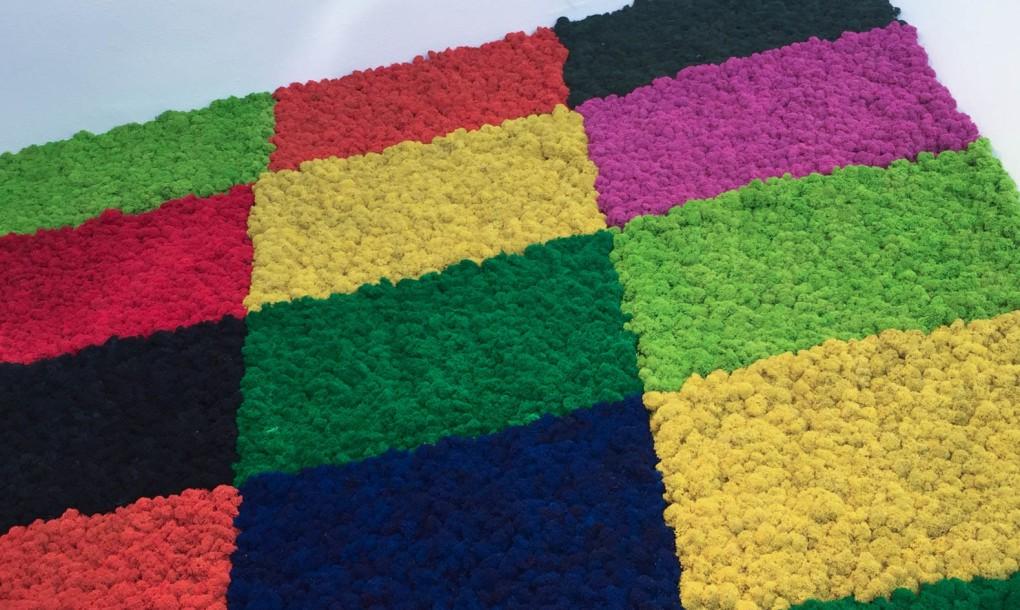 mossmania-moss-patch-colour-mosaic-1020x610.jpg
