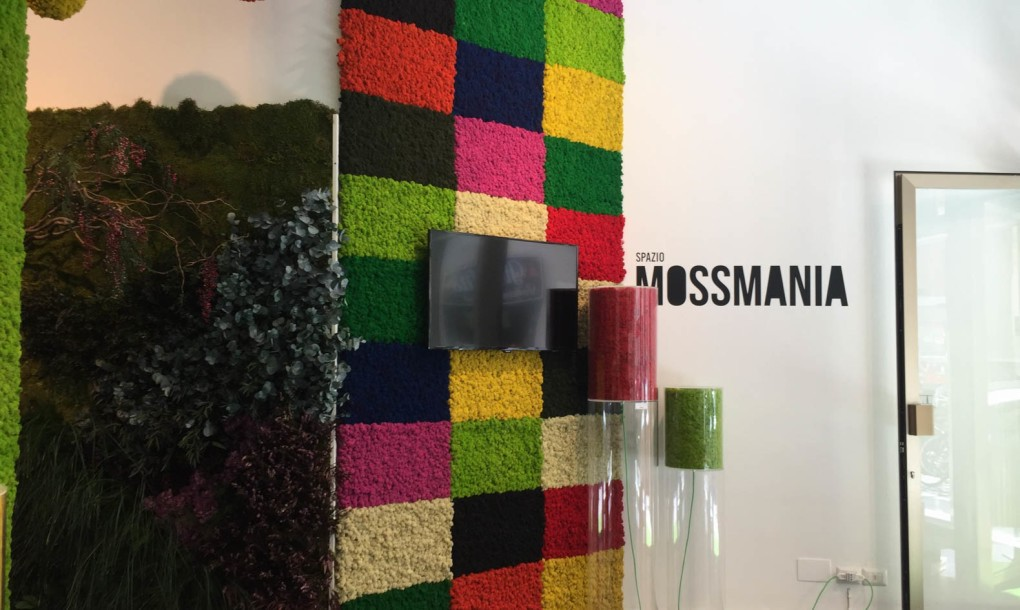 mossmania-showroom-mosaic-wall-1020x610.jpg