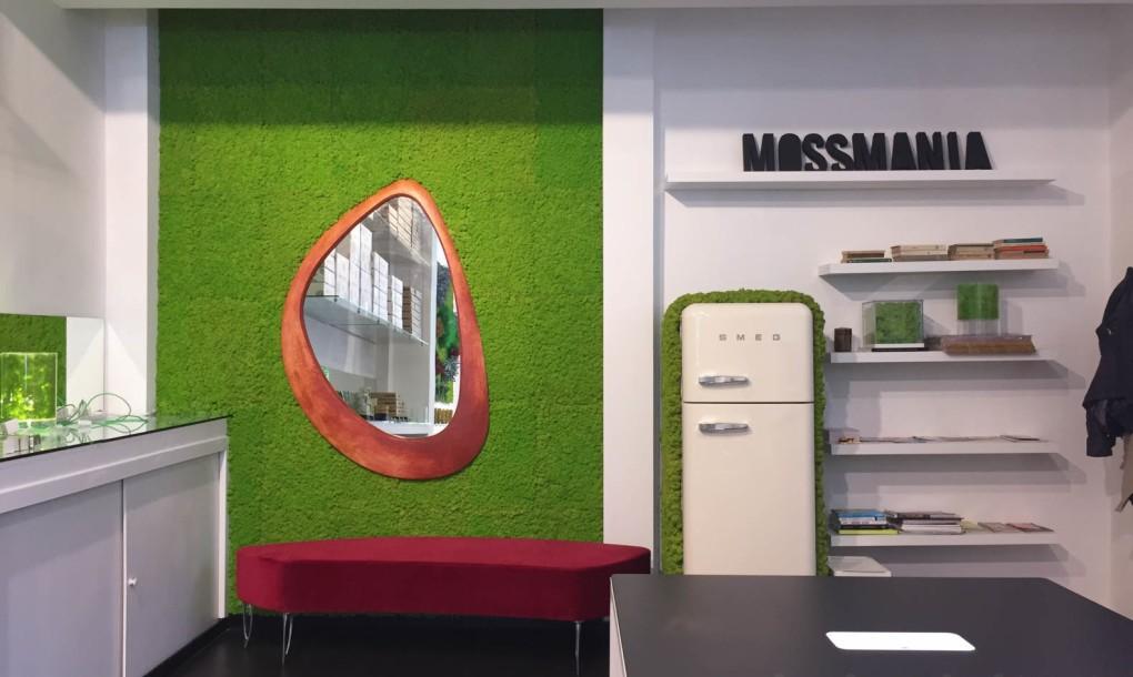 mossmania-studio-space-1020x610.jpg
