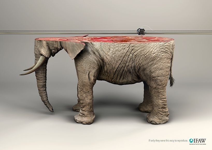 young-rubicam-ifaw-campaign-3d-printed-animals-designboom-11.jpg