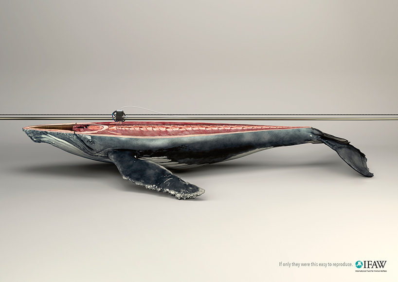young-rubicam-ifaw-campaign-3d-printed-animals-designboom-12.jpg