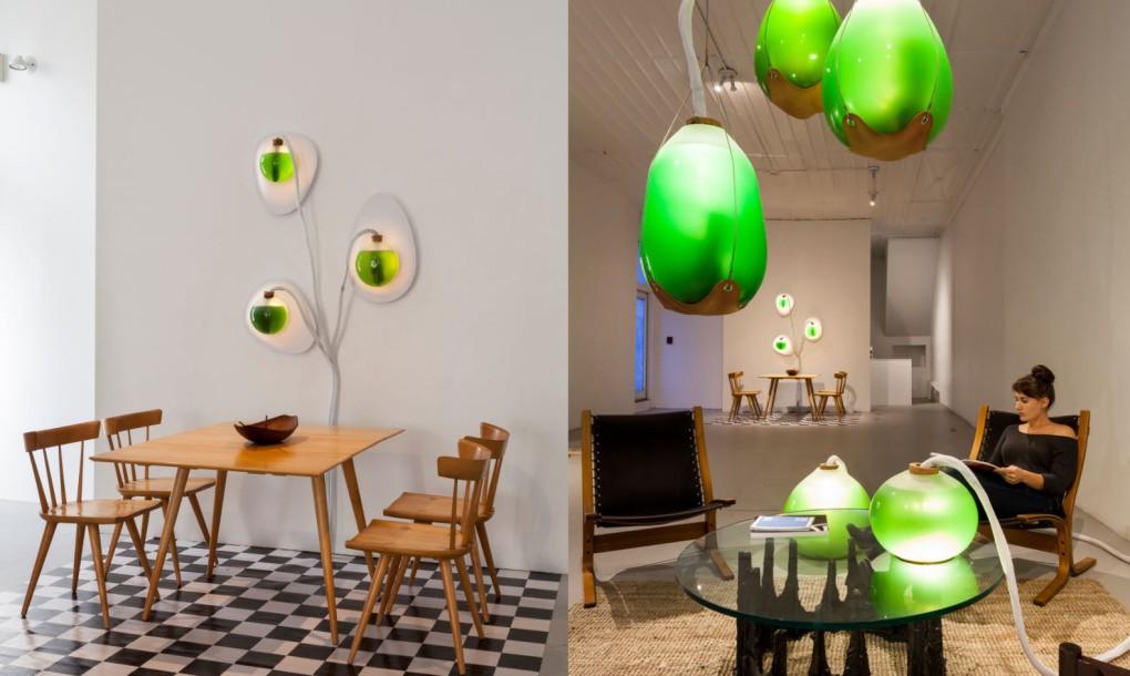 living-things-spirulina-lamp-split-1020x610.jpg