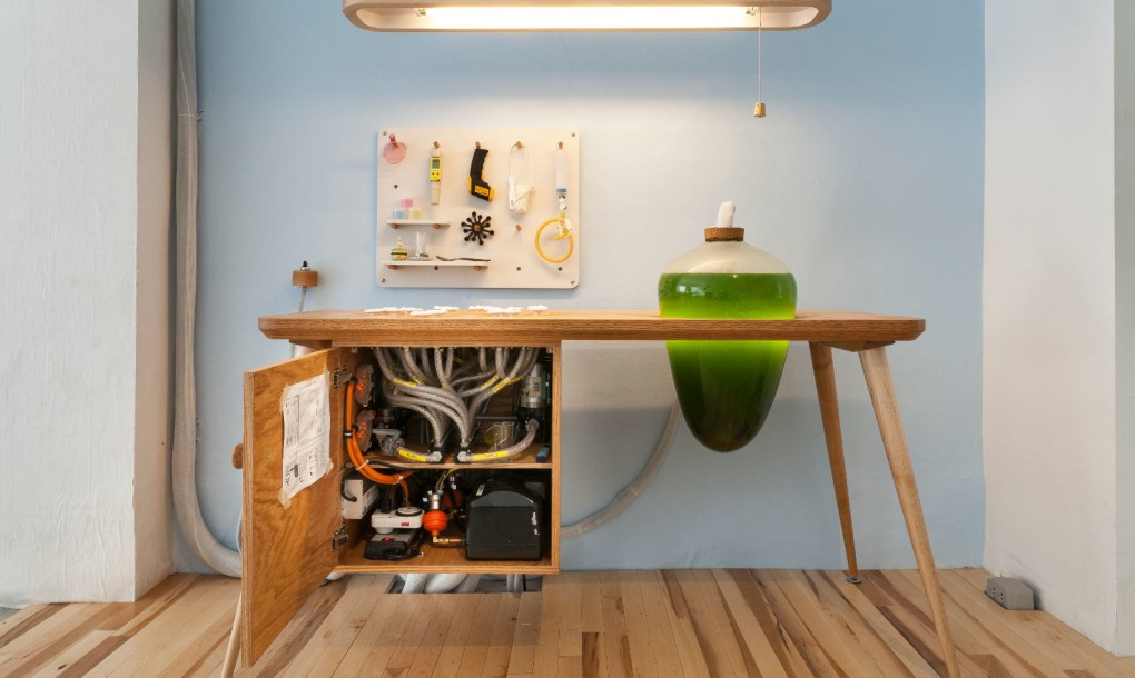 living-things-spirulina-table-1020x610.jpg