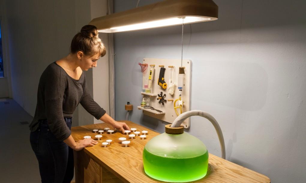 living-things-spirulina-table-interactive-angle-1020x610.jpg