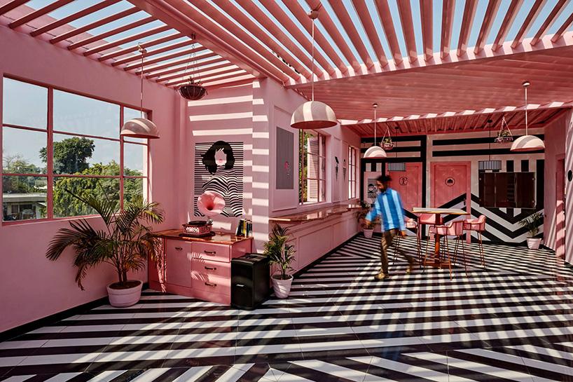 pink-zebra-feast-india-company-kanpur-india-renesa-noko-03.jpg