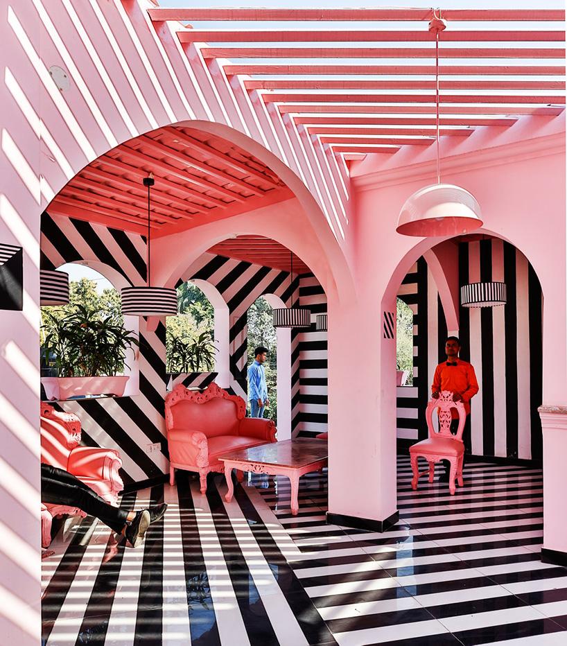 pink-zebra-feast-india-company-kanpur-india-renesa-noko-04.jpg