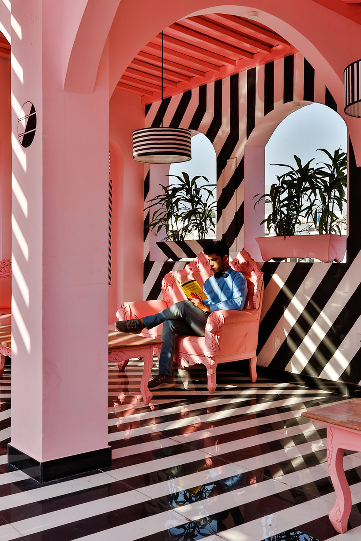 pink-zebra-feast-india-company-kanpur-india-renesa-noko-06.jpg