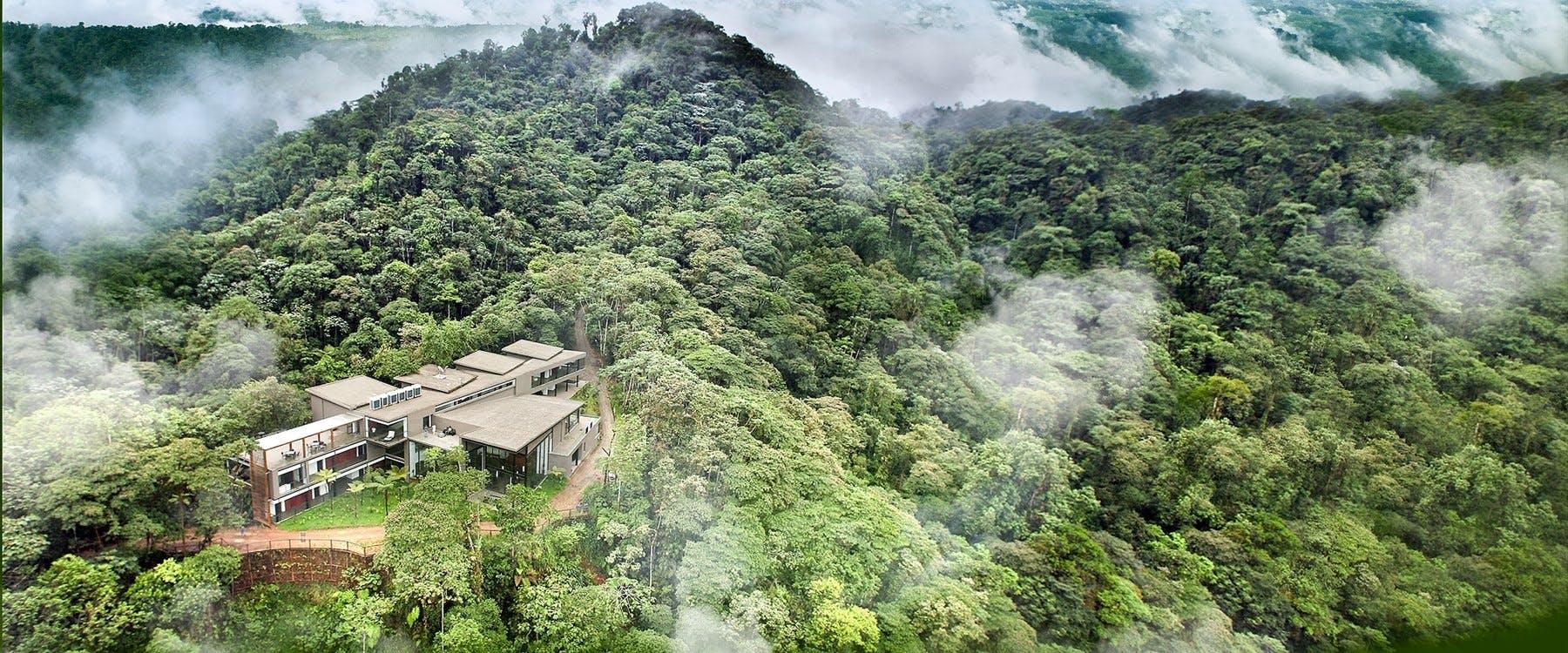mashpi-lodge-egyedulallo-szallashely-ecuadorban-noko-06.jpg