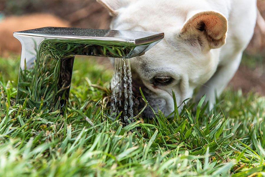 kutyahaz-szamos-praktikus-megoldassal-noko-07.jpg