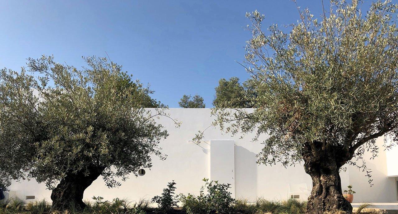 casa-luum-minimalizmus-a-portugal-videken-noko-025.jpg