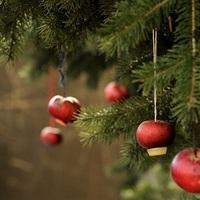 A karácsonyfa eredete