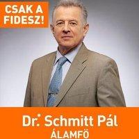 A Facebookon így látják Schmitt Pál doktoriját