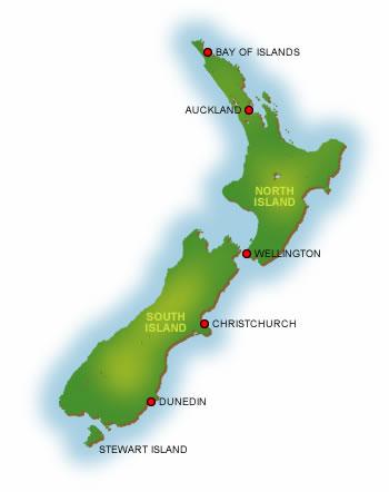 Új-Zélandi sör