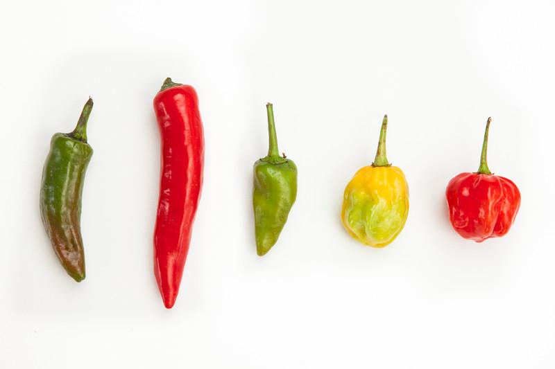 pivoblog, sör, sörblog, hot-peppers-jalapeno-thai-serrano-habanero-scotchbonnet.jpg