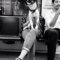 Zazie dans le métro #bw #blackandwhitephoto #badits #budapest #subway #metro #peoplescreatives #dog #travel #journey #trip #tour