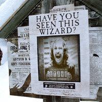 Politikailag korrekt Harry Potter